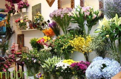 Shop hoa tươi Đà Nẵng đẹp và giá rẻ tại Đà Nẵng