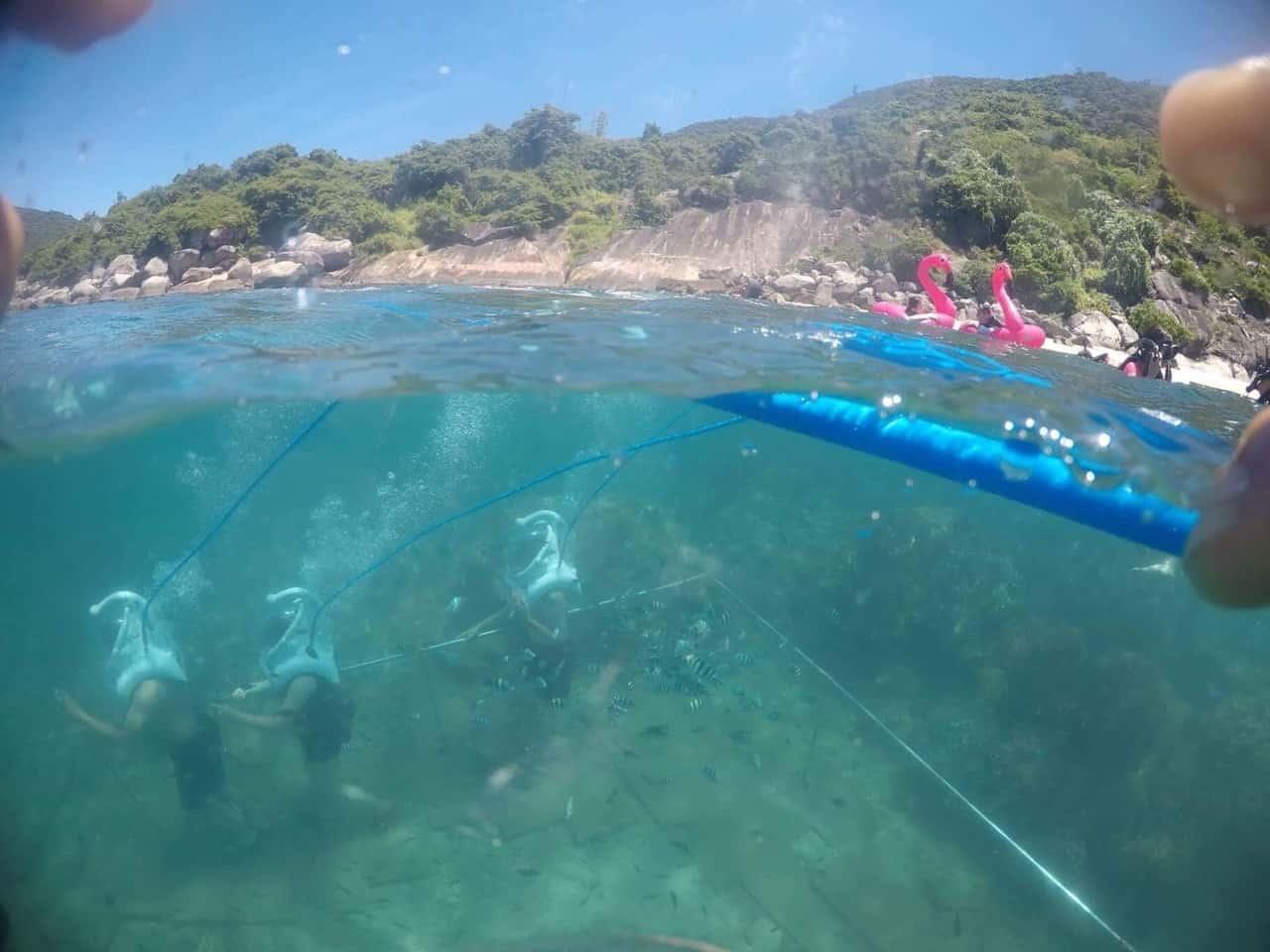 Lặn biển tại Cù Lao Chàm