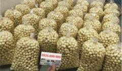 Bán hạt sen tươi Huế tại Đà Nẵng